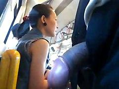 Touch Touch Public Bus