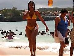 Busty Girl Wearing See Through Bikini