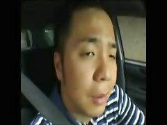 Driver&039;s Fantasy