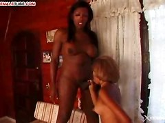 Ebony T-girl Has Big Cock!