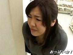 Sazanami Yume
